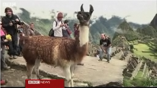 Peru's Machu Picchu re-opens to tourists
