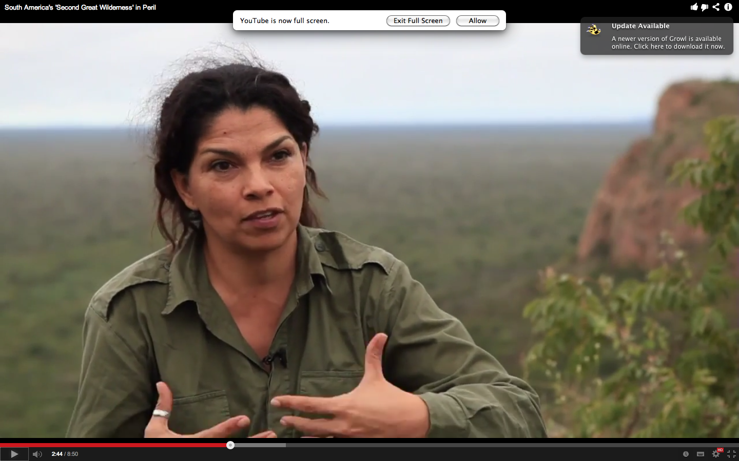 The woman saving South America's 2nd wilderness